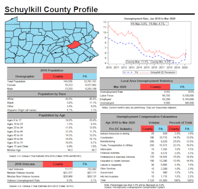 Schuylkill County Profile